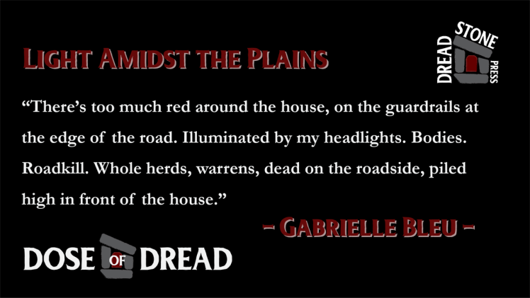 """Teaser text for the story """"Light Amidst the Plains."""" """"There's too much red around the house, on the guardrails at the edge of the road. Illuminated by my headlights. Bodies. Roadkill. Whole herds, warrens, dead on the roadside, piled high in front of the house."""""""